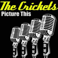 Picture This — The Crickets
