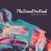 TheSoundYouNeed, Vol. 1 — сборник