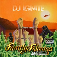Family Felonies Gdp Volume 2 — Dj Ignite