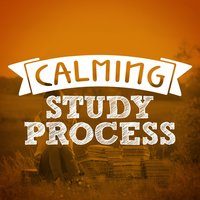 Calming Study Process — Studying Music and Study Music, Exam Study Classical Music Orchestra, Calm Music for Studying, Calm Music for Studying|Exam Study Classical Music Orchestra|Studying Music and Study Music