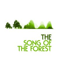 The Song of the Forest — Dreams of Nature