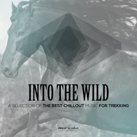 Into the Wild (A Selection of the Best Chillout Music for Trekking) — сборник