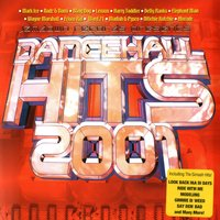 Dancehall Hits 2001 — Various Artists - Jamdown Records