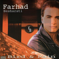 Bird & Rain - Persian Music — Farhad Besharati