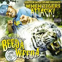 Slappin' in the Trunk Presents - When Tigers Attack! — Beeda Weeda