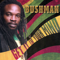 Get It In Your Mind — Bushman