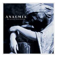 The Second Incarnation — Anaemia