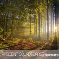 Ambient SoundScapes, Vol. 14 — Terry Oldfield