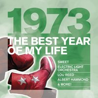 The Best Year Of My Life: 1973 — сборник