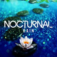 Nocturnal Rain — Rain Sleep