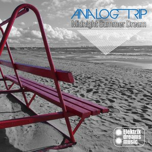 Analog Trip - For Love
