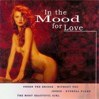 In the Mood for Love — Pop Du Monde Orchestra