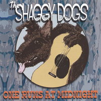 One Runs At Midnight — The Shaggy Dogs