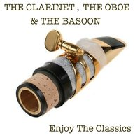 Clarinet, Oboe and Bassoon — The  Budnik Chambers Orchestra