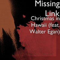 Christmas in Hawaii — Walter Egan, Missing Link