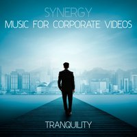 Synergy: Music for Corporate Videos - Tranquility — сборник