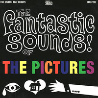 The Fantastic Sounds of the Pictures — The Pictures