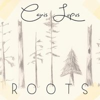 Roots — Canis Lupus