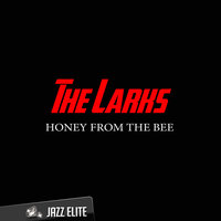 Honey from the Bee — The Larks