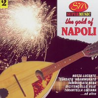 The Gold Of Napoli Vol 2 — Various Artists - Duck Records