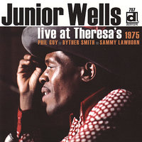 Live at Theresa's 1975 — Junior Wells