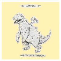 How to Do a Somersault — The Somersault Boy
