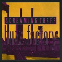 Buzz Factory — Screaming Trees