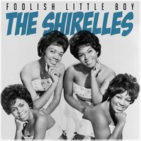 Foolish Little Boy — The Shirelees