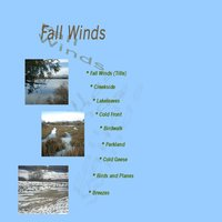 Fall Winds — Bradley Jarvis