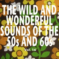 The Wild and Wonderful Sounds of the 50s and 60s, Vol. 16 — сборник