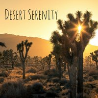 Desert Serenity — Rain Sounds