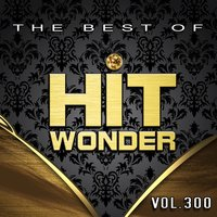 Hit Wonder: The Best Of, Vol. 300 — сборник