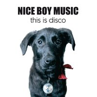 This Is Disco — Nice Boy Music