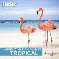 Tropical — DJ Haze, Angel D'Maria, Angel D'Maria, DJ Haze