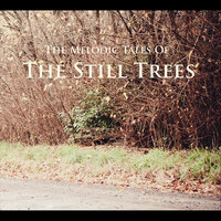 The Melodic Tales of the Still Trees — The Still Trees
