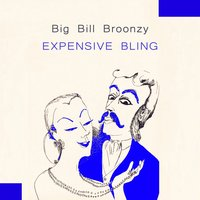 Expensive Bling — Big Bill Broonzy