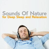 Sounds of Nature for Deep Sleep and Relaxation — Sounds of Nature for Deep Sleep and Relaxation