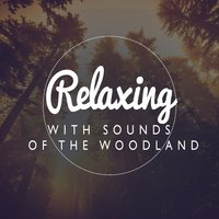 Relaxing with Sounds of the Woodland — Relaxing With Sounds of Nature and Spa Music Natural White Noise Sound Therapy, Bruits naturels, Sleep Music with Nature Sounds Relaxation, Bruits naturels|Relaxing With Sounds of Nature and Spa Music Natural White Noise Sound Therapy|Sleep Music with Nature Sounds Relaxation