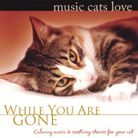 Music Cats Love: While You Are Gone — Bradley Joseph