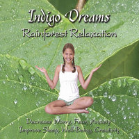 Indigo Dreams: Rainforest Relaxation Decrease Worry, Fear, Anxiety,  Improve Sleep, Well Being and Creativity — Lori Lite