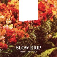 Slow Drip — Mosé + The FMLY