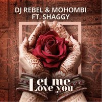 Let Me Love You — Shaggy, DJ Rebel, Mohombi