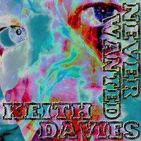 Never Wanted — Keith Davies