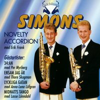 Novelty Accordion — Simons