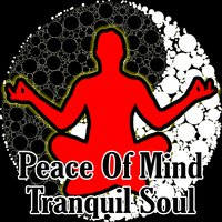 Peace Of Mind Tranquil Soul — Meditation Masters