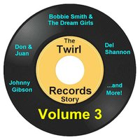 Twirl Records Story Volume 3 — сборник