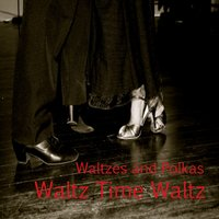Waltzes and Polkas: Waltz Time Waltz — The O'Neill Brothers Group