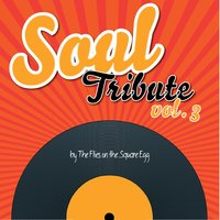 Soul Tribute, Vol.3 — Flies on the Square Egg