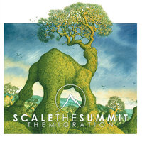 The Migration — Scale the Summit