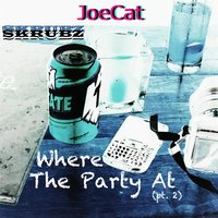 Where the Party At, Pt. 2 — JoeCat